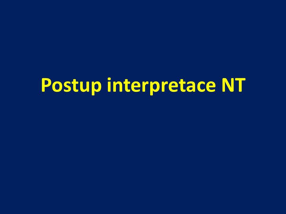 Postup interpretace NT