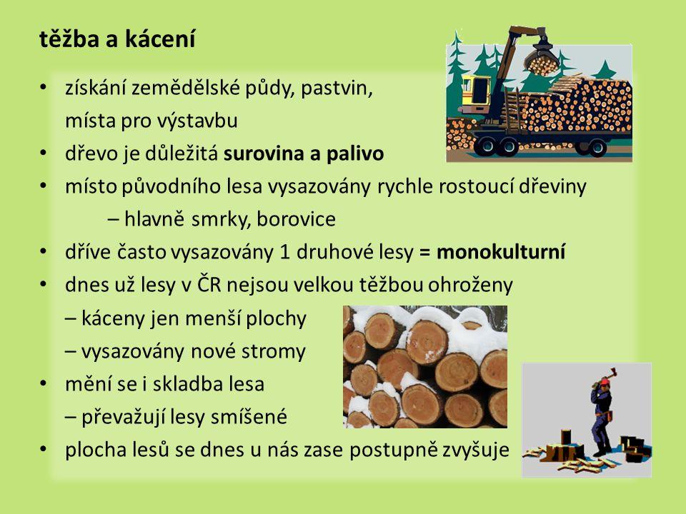 těžba a kácení • získání zemědělské půdy, pastvin, místa pro výstavbu • dřevo je důležitá surovina a palivo • místo původního lesa vysazovány rychle r