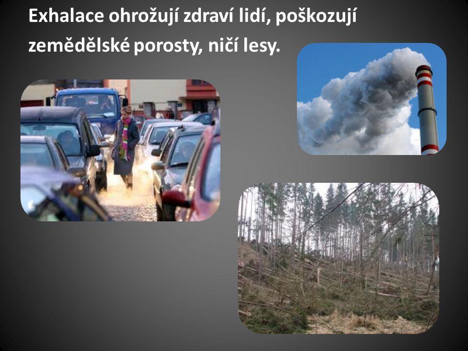 Exhalace ohrožují zdraví lidí, poškozují zemědělské porosty, ničí lesy.