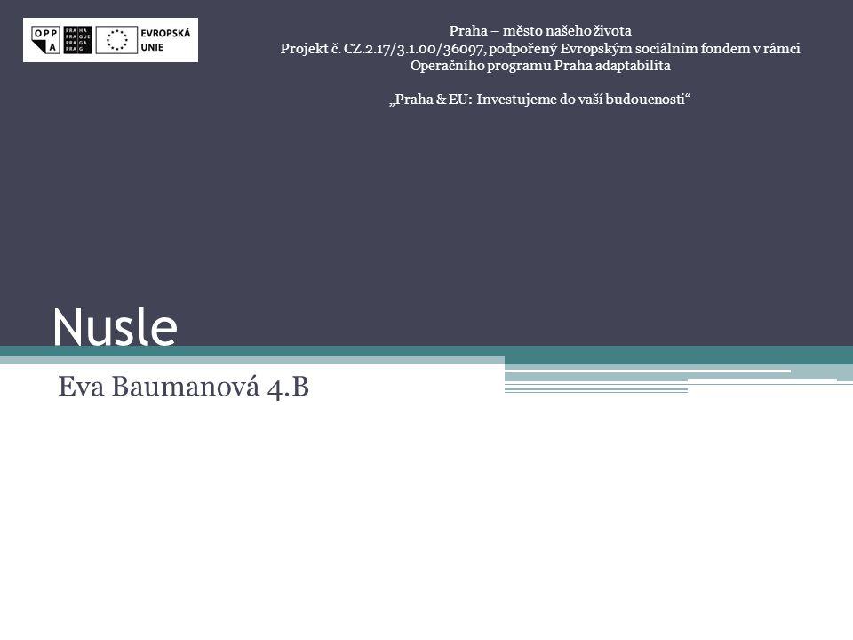 Nusle Eva Baumanová 4.B Praha – město našeho života Projekt č. CZ.2.17/3.1.00/36097, podpořený Evropským sociálním fondem v rámci Operačního programu