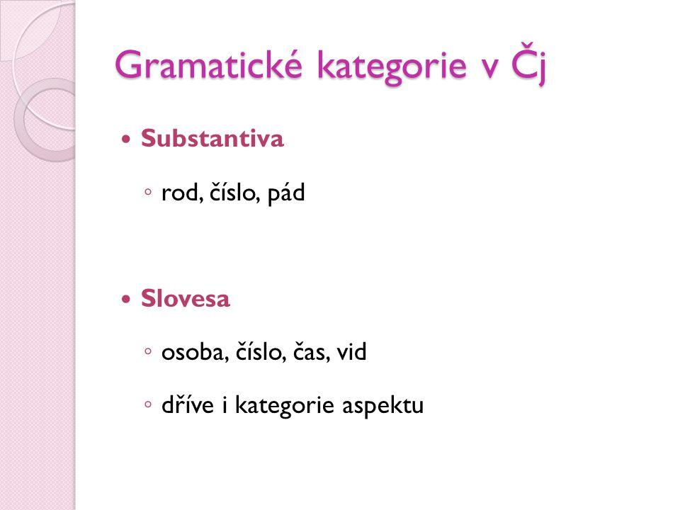 Gramatické kategorie v Čj  Substantiva ◦ rod, číslo, pád  Slovesa ◦ osoba, číslo, čas, vid ◦ dříve i kategorie aspektu