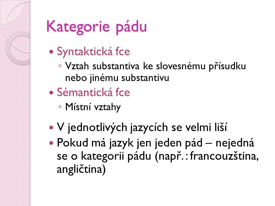 Kategorie pádu  Syntaktická fce ◦ Vztah substantiva ke slovesnému přísudku nebo jinému substantivu  Sémantická fce ◦ Místní vztahy  V jednotlivých