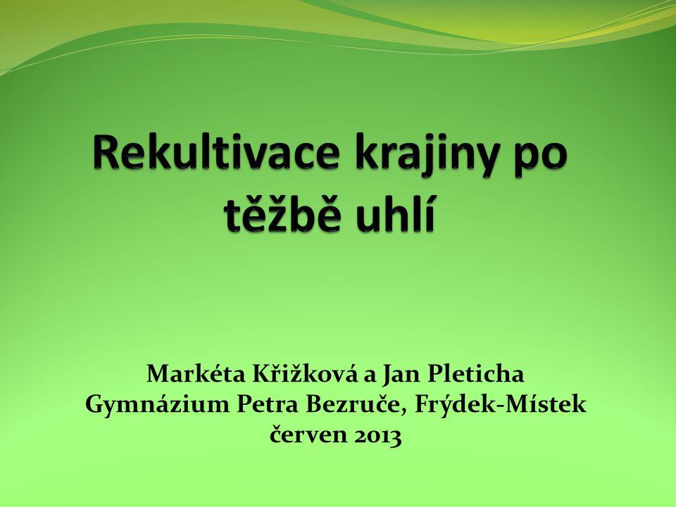 Markéta Křižková a Jan Pleticha Gymnázium Petra Bezruče, Frýdek-Místek červen 2013