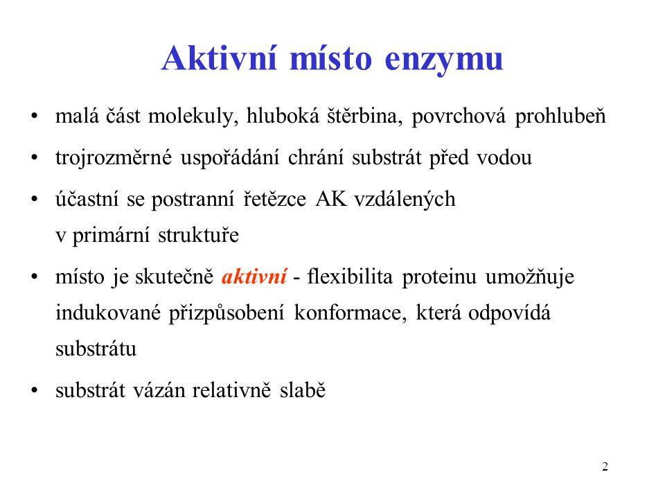 63 Aktivace enzymu částečnou proteolýzou •Aktivní enzym vzniká nevratným odštěpením určité sekvence z molekuly proenzymu •Proteinasy v GIT (pepsinogen  pepsin) •Faktory krevního srážení •Proteinasy (kaspasy) aktivované v průběhu apoptózy