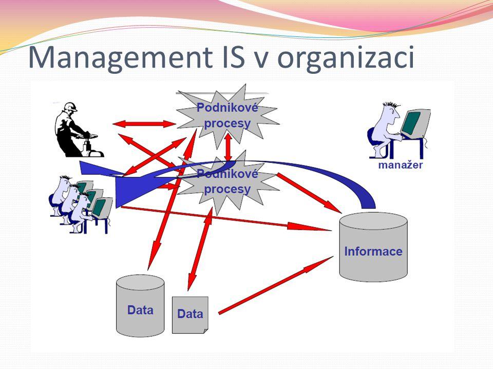 Management IS v organizaci