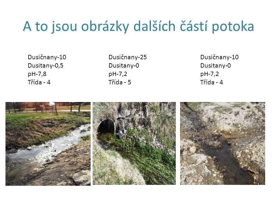 A to jsou obrázky dalších částí potoka Dusičnany-10 Dusitany-0,5 pH-7,8 Třída - 4 Dusičnany-25 Dusitany-0 pH-7,2 Třída - 5 Dusičnany-10 Dusitany-0 pH-7,2 Třída - 4