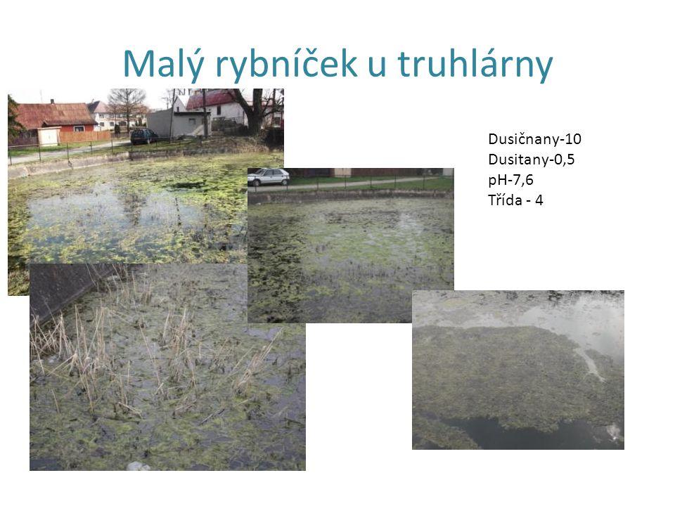 Malý rybníček u truhlárny Dusičnany-10 Dusitany-0,5 pH-7,6 Třída - 4