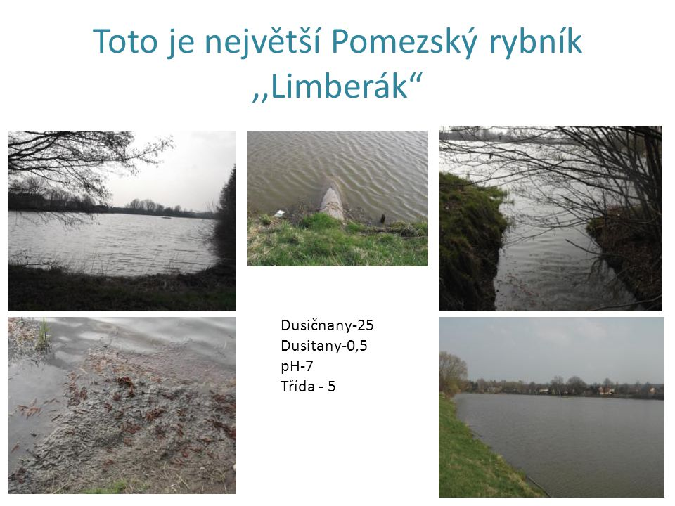 Toto je největší Pomezský rybník,,Limberák Dusičnany-25 Dusitany-0,5 pH-7 Třída - 5