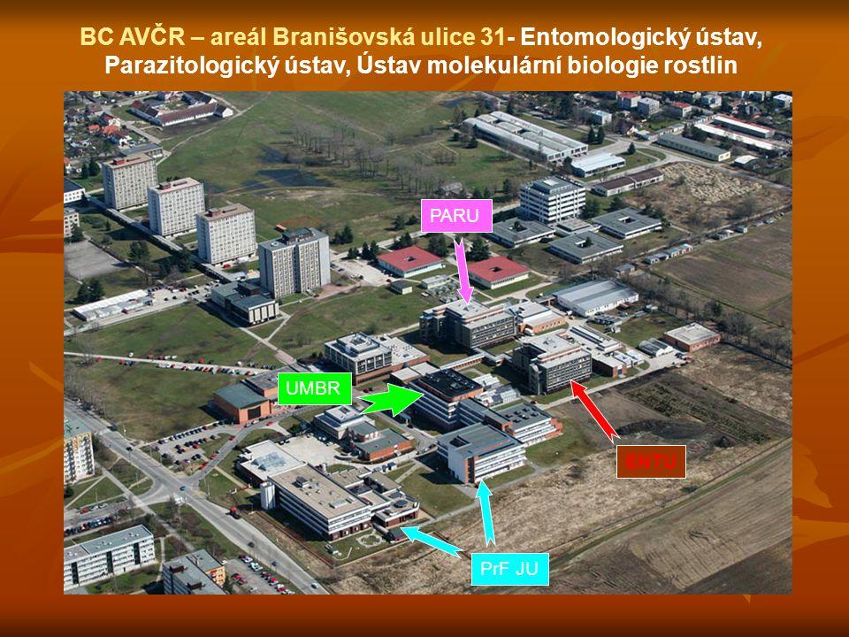 BC AVČR – areál Na Sádkách 7 Hydrobiologický ústav a Ústav půdní biologie