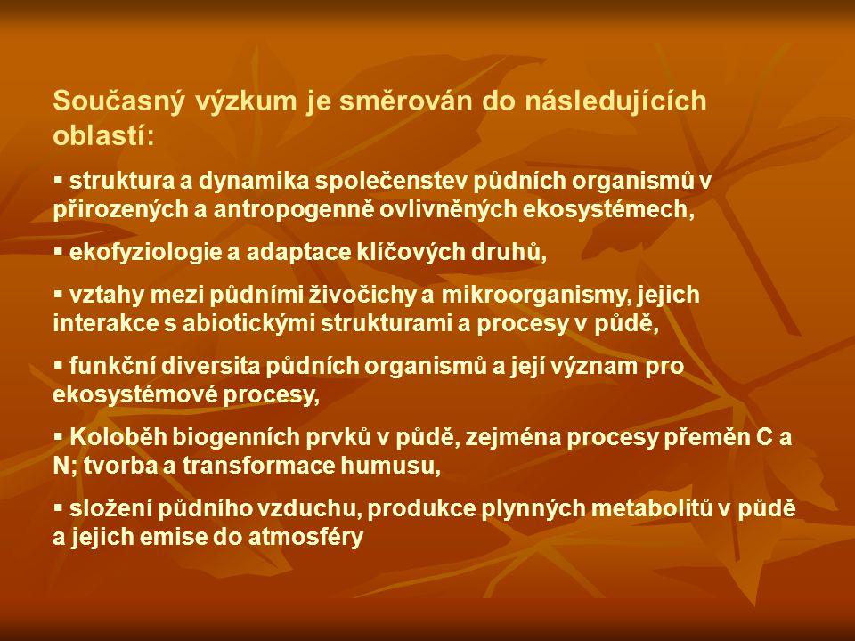Současný výzkum je směrován do následujících oblastí:  struktura a dynamika společenstev půdních organismů v přirozených a antropogenně ovlivněných ekosystémech,  ekofyziologie a adaptace klíčových druhů,  vztahy mezi půdními živočichy a mikroorganismy, jejich interakce s abiotickými strukturami a procesy v půdě,  funkční diversita půdních organismů a její význam pro ekosystémové procesy,  Koloběh biogenních prvků v půdě, zejména procesy přeměn C a N; tvorba a transformace humusu,  složení půdního vzduchu, produkce plynných metabolitů v půdě a jejich emise do atmosféry