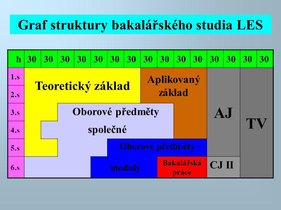 h30 1.s Teoretický základ Aplikovaný základ AJ TV 2.s 3.s Oborové předměty 4.s společné 5.s Oborové předměty 6.s moduly Bakalářská práce CJ II Graf st