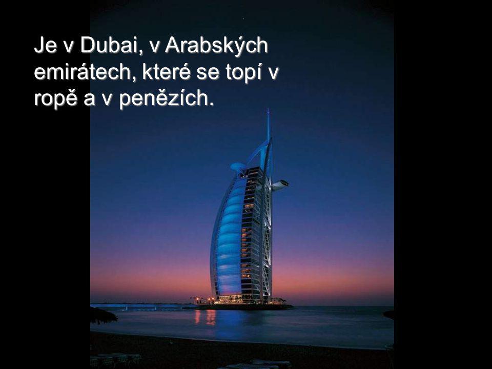 Pohled z letadla (chacha, co byste chtěli víc). Všimněte si hotel Burž al Arab.