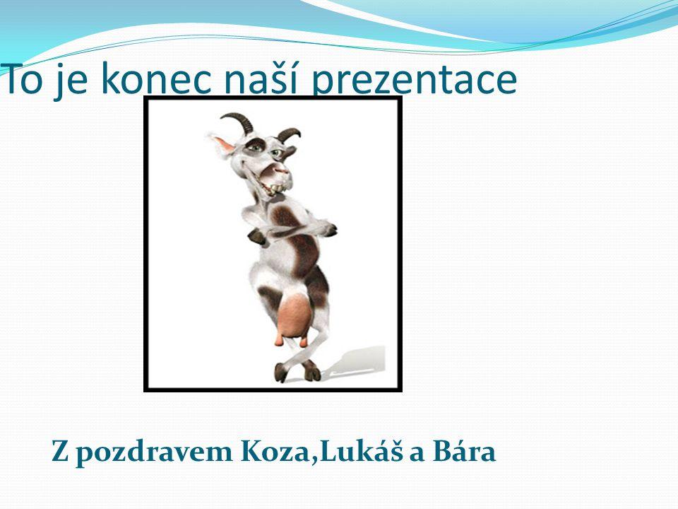 To je konec naší prezentace Z pozdravem Koza,Lukáš a Bára