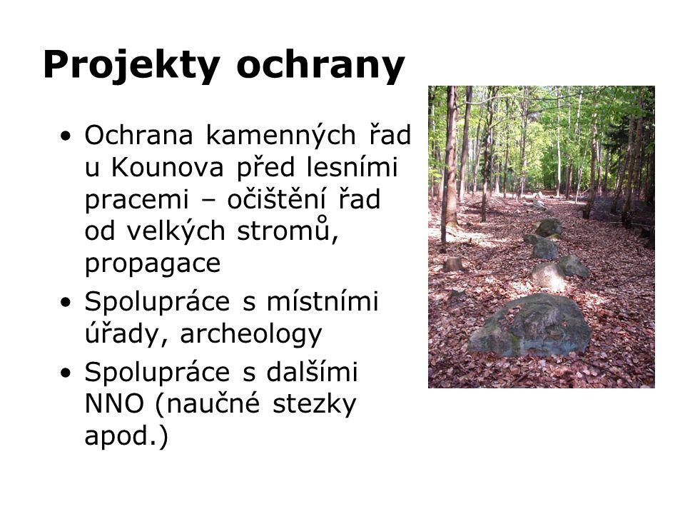 Projekty ochrany •Ochrana kamenných řad u Kounova před lesními pracemi – očištění řad od velkých stromů, propagace •Spolupráce s místními úřady, arche
