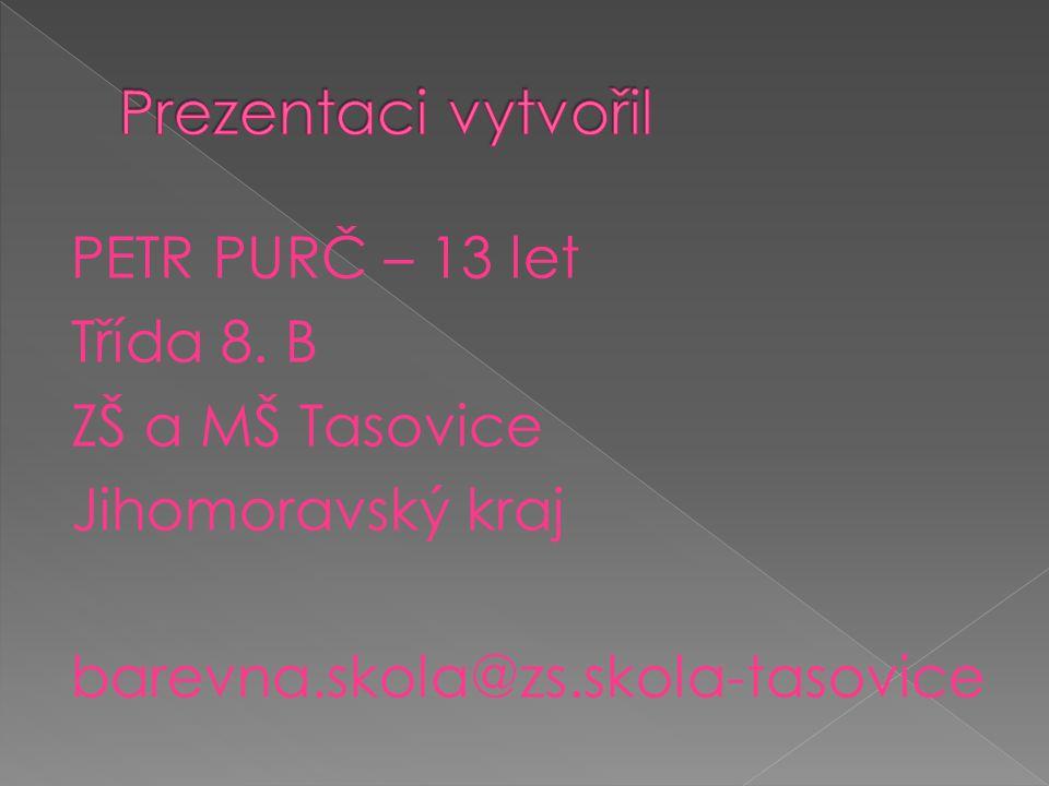 PETR PURČ – 13 let Třída 8. B ZŠ a MŠ Tasovice Jihomoravský kraj barevna.skola@zs.skola-tasovice
