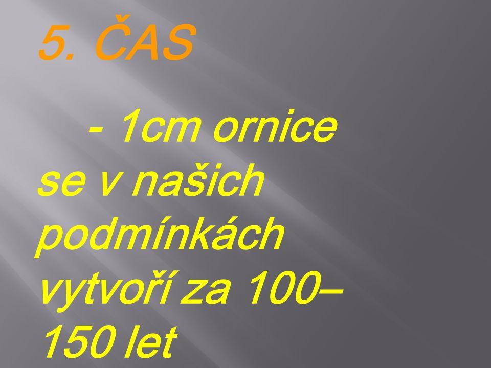 5. ČAS - 1cm ornice se v našich podmínkách vytvoří za 100– 150 let