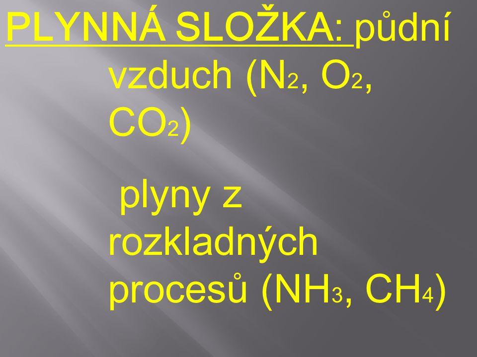 PLYNNÁ SLOŽKA: půdní vzduch (N 2, O 2, CO 2 ) plyny z rozkladných procesů (NH 3, CH 4 )