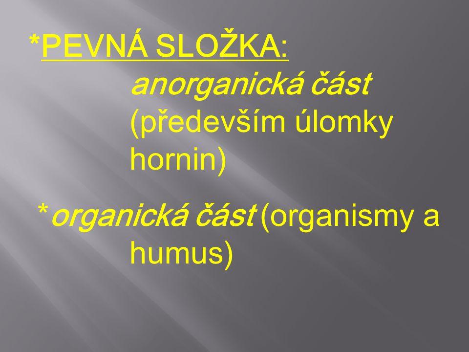 *PEVNÁ SLOŽKA: anorganická část (především úlomky hornin) *organická část (organismy a humus)