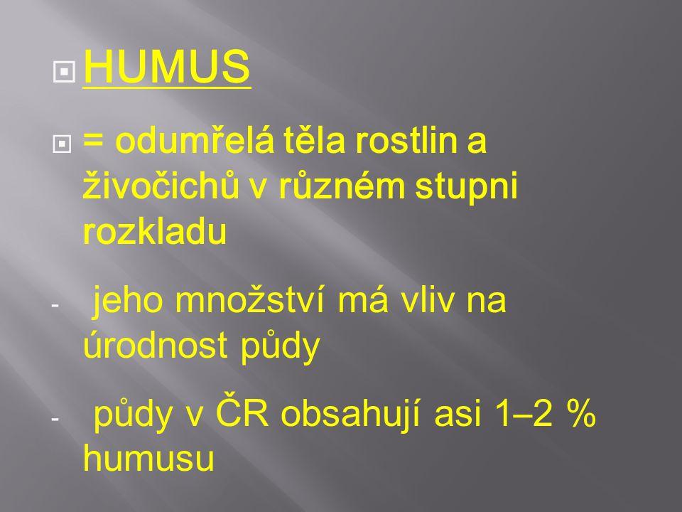  HUMUS  = odumřelá těla rostlin a živočichů v různém stupni rozkladu - jeho množství má vliv na úrodnost půdy - půdy v ČR obsahují asi 1–2 % humusu