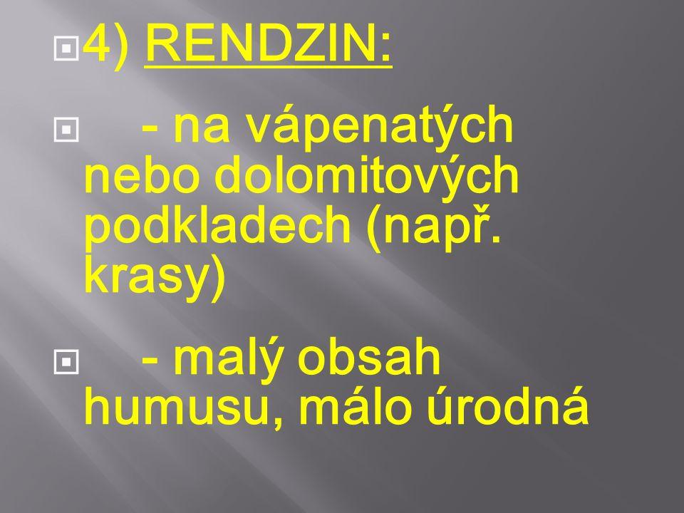  4) RENDZIN:  - na vápenatých nebo dolomitových podkladech (např. krasy)  - malý obsah humusu, málo úrodná