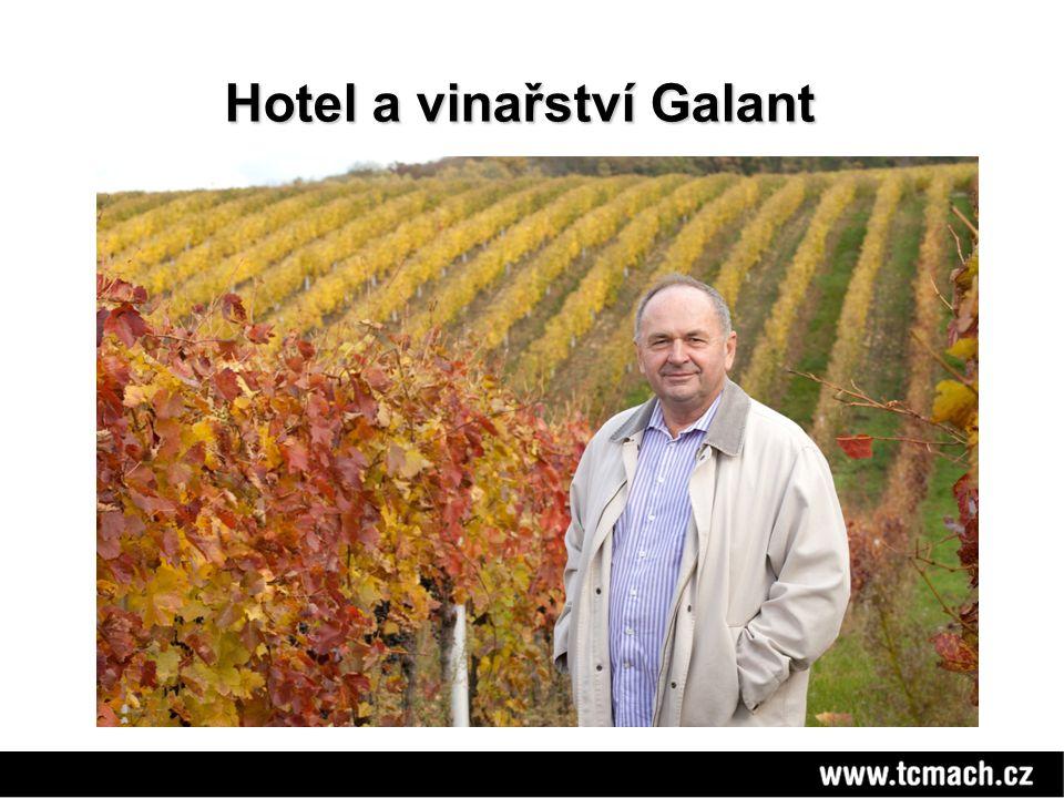 Hotel a vinařství Galant