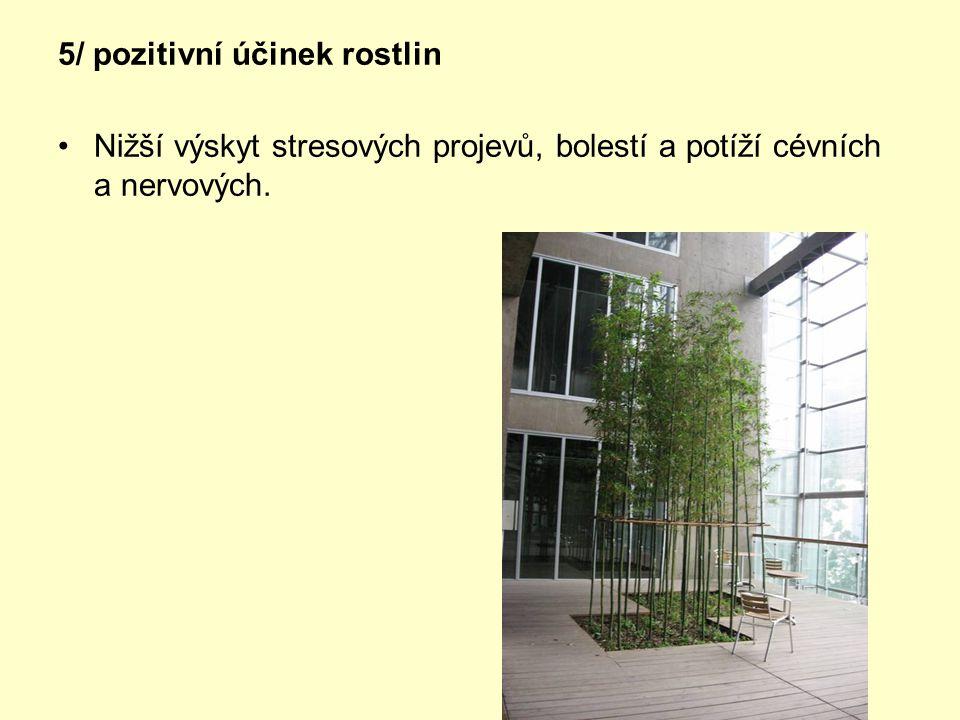 5/ pozitivní účinek rostlin •Nižší výskyt stresových projevů, bolestí a potíží cévních a nervových.