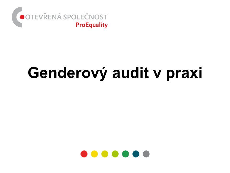 Genderový audit v praxi
