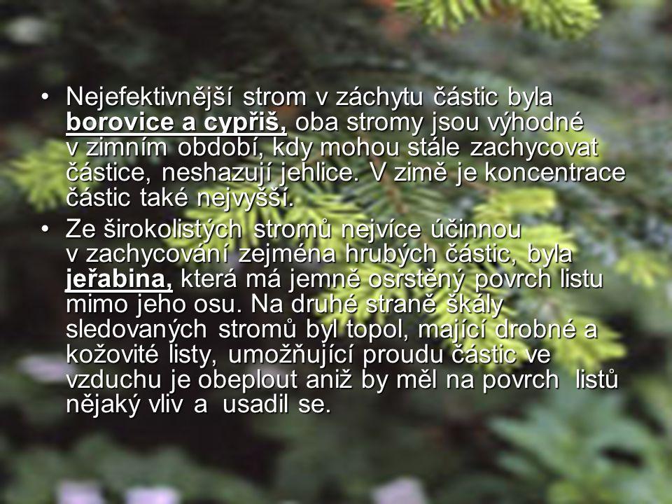 •Nejefektivnější strom v záchytu částic byla borovice a cypřiš, oba stromy jsou výhodné v zimním období, kdy mohou stále zachycovat částice, neshazují jehlice.