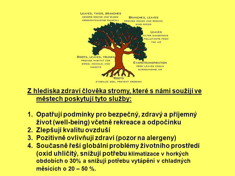 Z hlediska zdraví člověka stromy, které s námi soužijí ve městech poskytují tyto služby: 1.Opatřují podmínky pro bezpečný, zdravý a příjemný život (well-being) včetně rekreace a odpočinku 2.Zlepšují kvalitu ovzduší 3.Pozitivně ovlivňují zdraví (pozor na alergeny) 4.Současně řeší globální problémy životního prostředí (oxid uhličitý, snižují potřebu klimatizace v horkých obdobích o 30% a snižují potřebu vytápění v chladných měsících o 20 – 50 %.