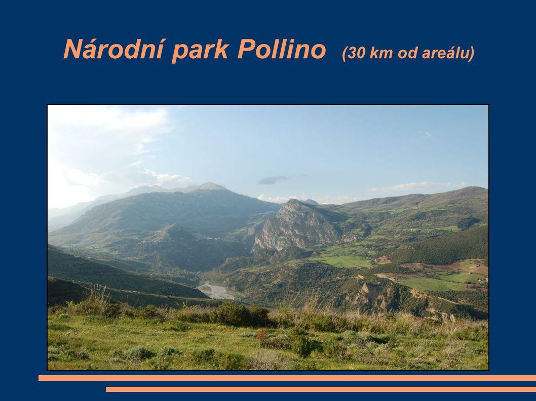 Národní park Pollino (30 km od areálu)