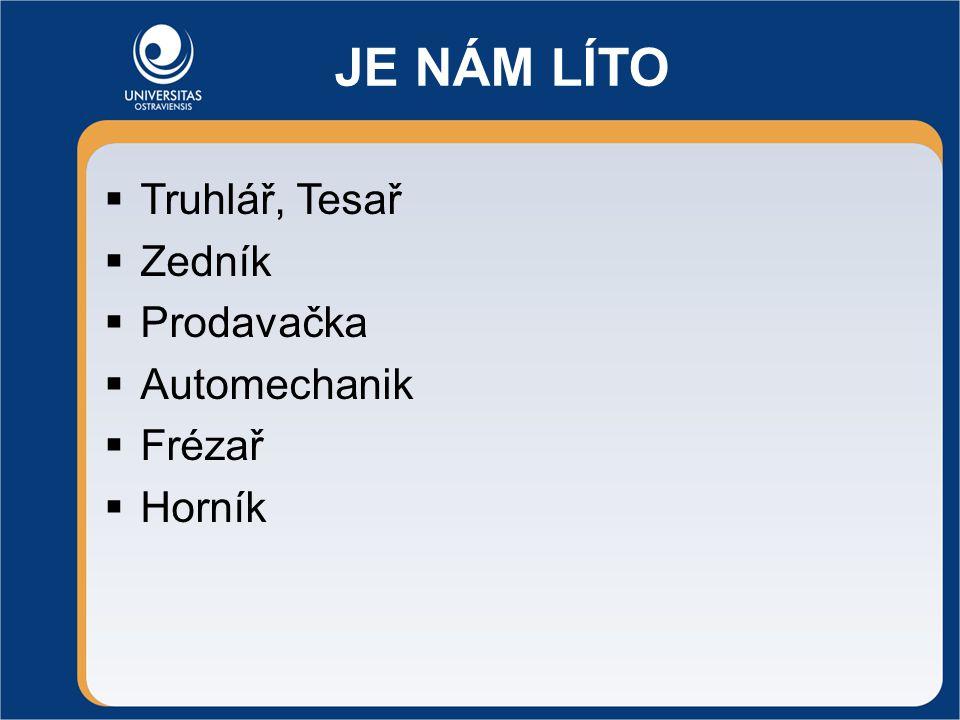 JE NÁM LÍTO  Truhlář, Tesař  Zedník  Prodavačka  Automechanik  Frézař  Horník