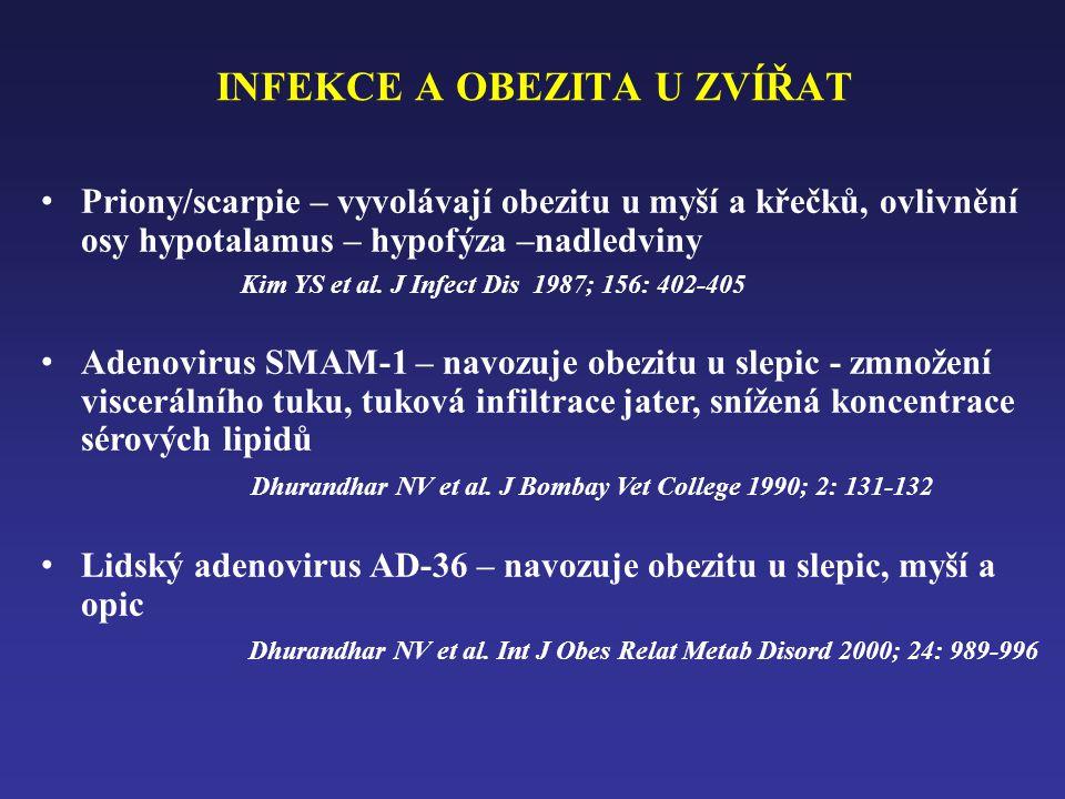 INFEKCE A OBEZITA U ZVÍŘAT • Priony/scarpie – vyvolávají obezitu u myší a křečků, ovlivnění osy hypotalamus – hypofýza –nadledviny Kim YS et al.
