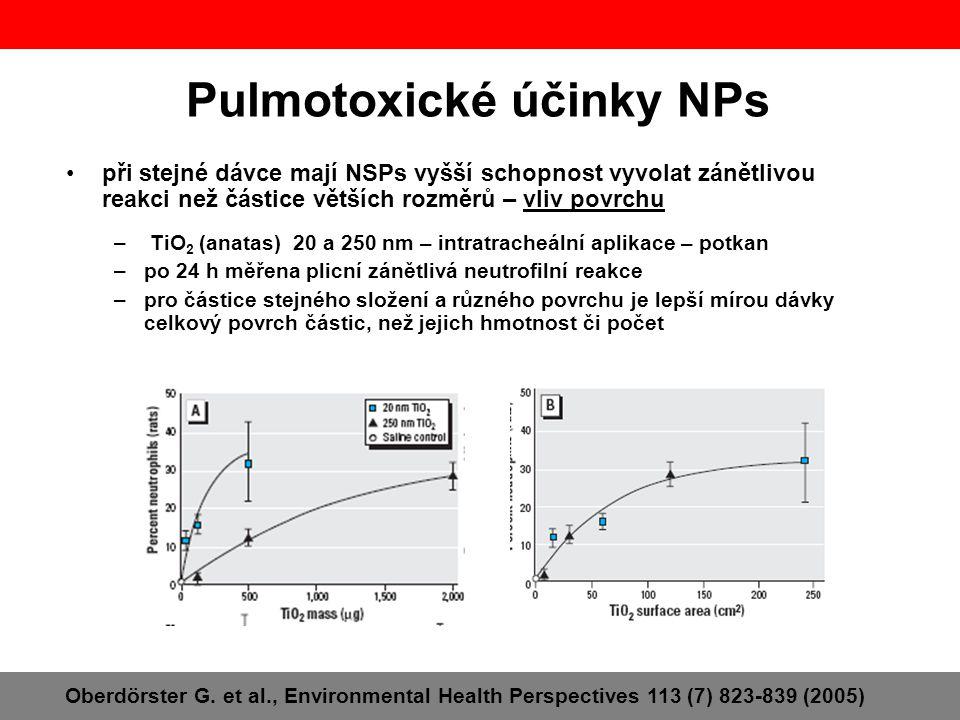 Pulmotoxické účinky NPs •při stejné dávce mají NSPs vyšší schopnost vyvolat zánětlivou reakci než částice větších rozměrů – vliv povrchu – TiO 2 (anat