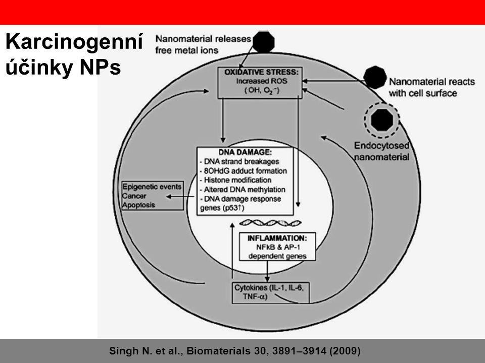 Karcinogenní účinky NPs Singh N. et al., Biomaterials 30, 3891–3914 (2009)