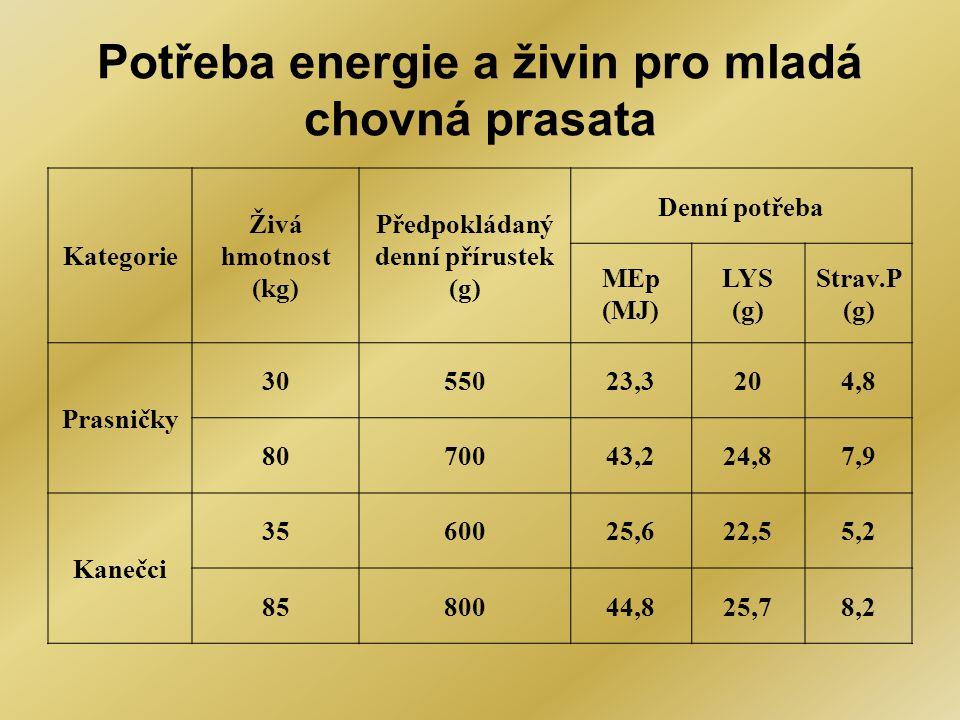 Potřeba energie a živin pro mladá chovná prasata Kategorie Živá hmotnost (kg) Předpokládaný denní přírustek (g) Denní potřeba MEp (MJ) LYS (g) Strav.P