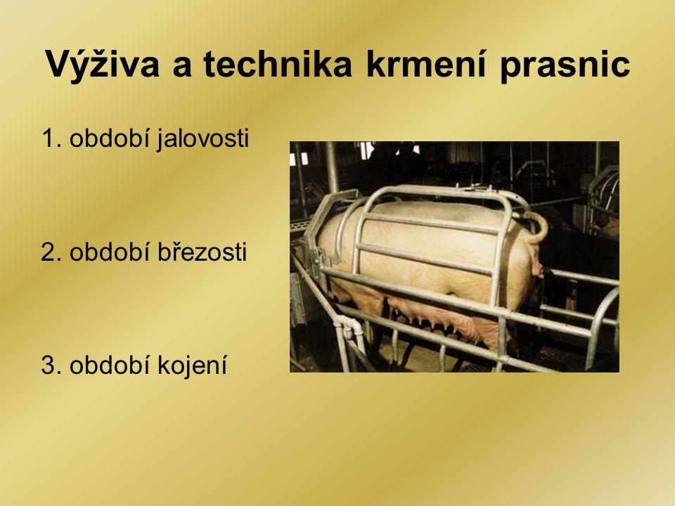 Krmiva vhodná pro prasnice •nejpoužívanější jsou kompletní krmné směsi KPB a KPK •při zkrmování objemných krmiv se používají doplňkové směsi DPB a DPK Objemná krmiva - jen jalovým a březím prasnicím - krmná řepa, mrkev, cukrovka, zelená hmota, (do 8 kg/kus), pařené brambory (do 2 kg) - není moc doporučováno Obiloviny a mlýnská krmiva: - 80 – 90 % podílu ve směsích - pšenice, ječmen, kukuřice Luštěniny - 5 – 10 % ve směsi - hrách nebo bob Živočišné moučky - nejdůležitější zdroj esenciálních AK - rybí, masová, masokostní - 3 – 5 % ve směsi Extrahované šroty - do 10 % ve směsích - možná náhražka živočišných mouček - sojový, řepkový, slunečnicový Minerální přísady a doplňky biofaktorů - pokrývají chybějící nebo nedostatkové látky (makro i mikroprvky, vitamíny, aminokyseliny)
