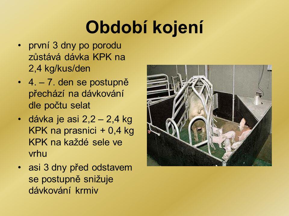Období kojení •první 3 dny po porodu zůstává dávka KPK na 2,4 kg/kus/den •4. – 7. den se postupně přechází na dávkování dle počtu selat •dávka je asi