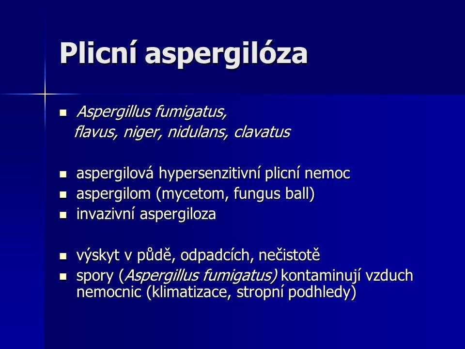 Plicní aspergilóza  Aspergillus fumigatus, flavus, niger, nidulans, clavatus flavus, niger, nidulans, clavatus  aspergilová hypersenzitivní plicní n
