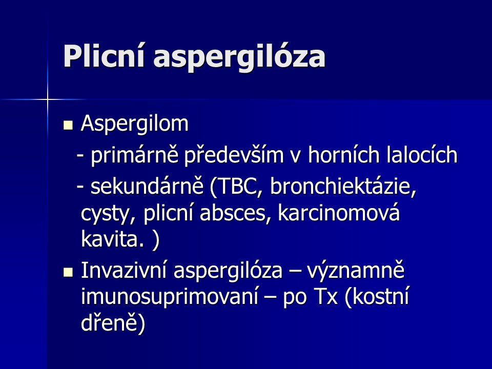 Plicní aspergilóza  Aspergilom - primárně především v horních lalocích - primárně především v horních lalocích - sekundárně (TBC, bronchiektázie, cys