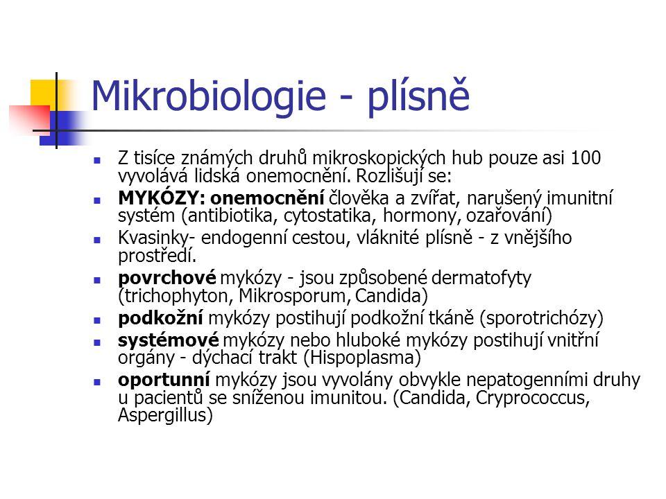 Mikrobiologie - plísně  Z tisíce známých druhů mikroskopických hub pouze asi 100 vyvolává lidská onemocnění. Rozlišují se:  MYKÓZY: onemocnění člově