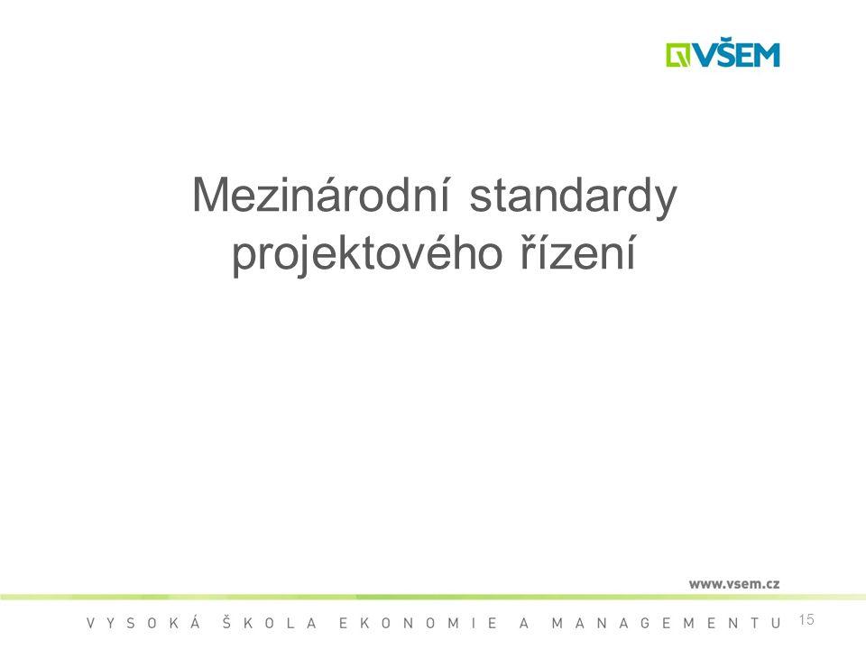 15 Mezinárodní standardy projektového řízení