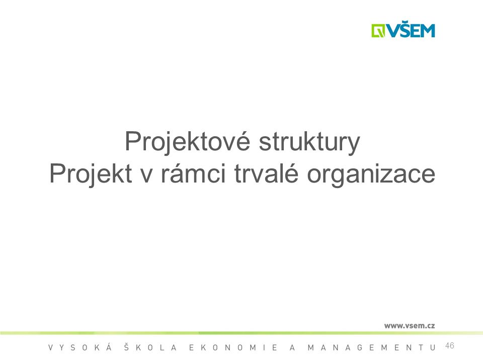 46 Projektové struktury Projekt v rámci trvalé organizace