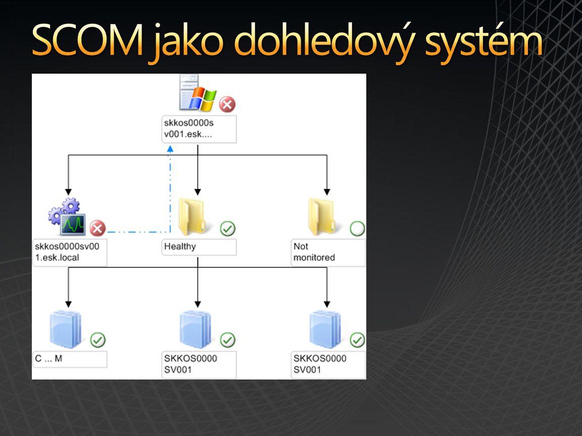 Entity Logical Entity Computer Role Windows Computer Role SQL Server Specializace IIS