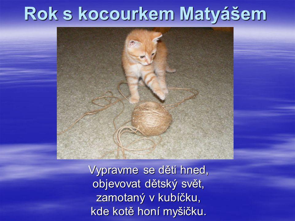 Rok s kocourkem Matyášem Vypravme se děti hned, objevovat dětský svět, zamotaný v kubíčku, kde kotě honí myšičku.
