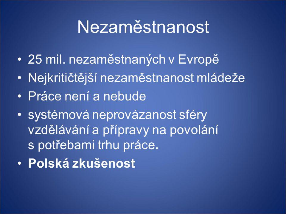 Nezaměstnanost •25 mil. nezaměstnaných v Evropě •Nejkritičtější nezaměstnanost mládeže •Práce není a nebude •systémová neprovázanost sféry vzdělávání