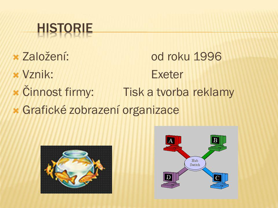  Založení: od roku 1996  Vznik:Exeter  Činnost firmy:Tisk a tvorba reklamy  Grafické zobrazení organizace