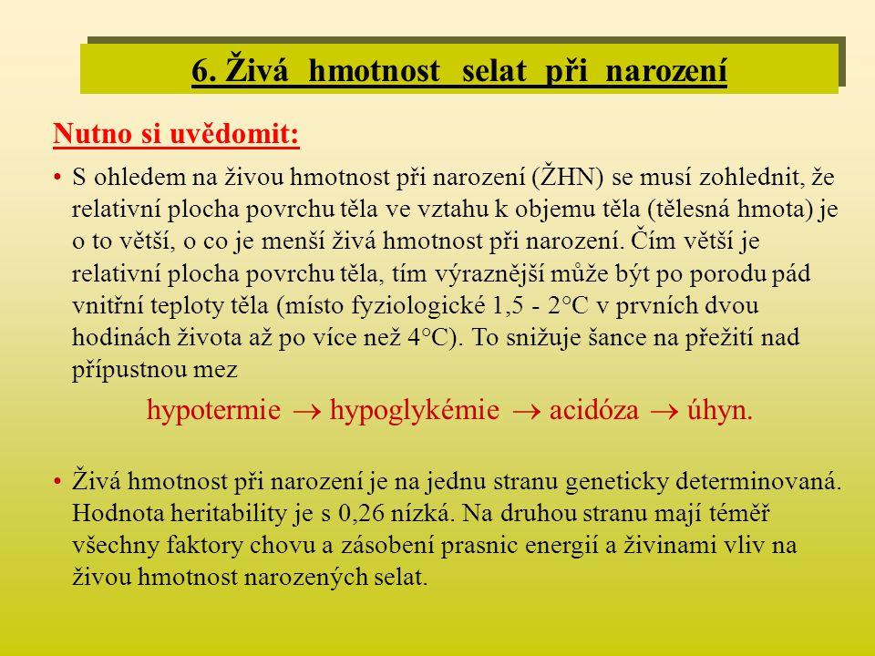6. Živá hmotnost selat při narození Nutno si uvědomit: •S ohledem na živou hmotnost při narození (ŽHN) se musí zohlednit, že relativní plocha povrchu