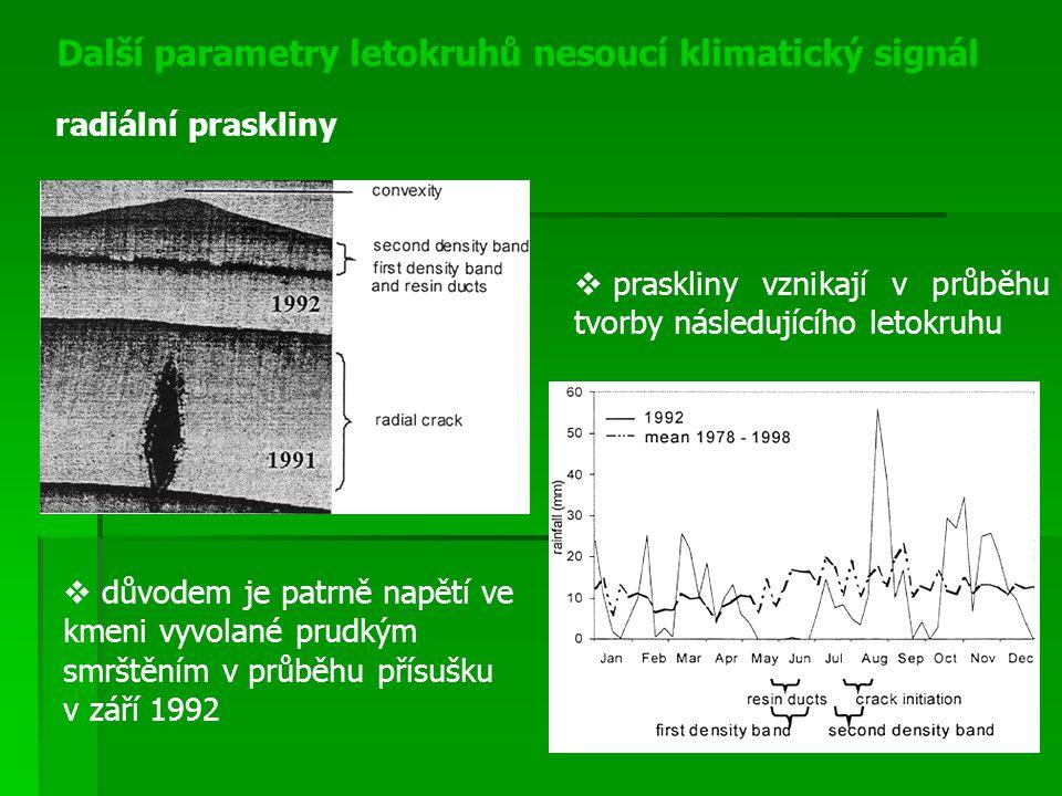 Další parametry letokruhů nesoucí klimatický signál radiální praskliny  praskliny vznikají v průběhu tvorby následujícího letokruhu  důvodem je patr