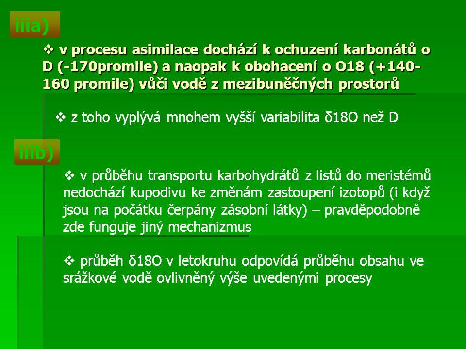 iiia)  v procesu asimilace dochází k ochuzení karbonátů o D (-170promile) a naopak k obohacení o O18 (+140- 160 promile) vůči vodě z mezibuněčných pr