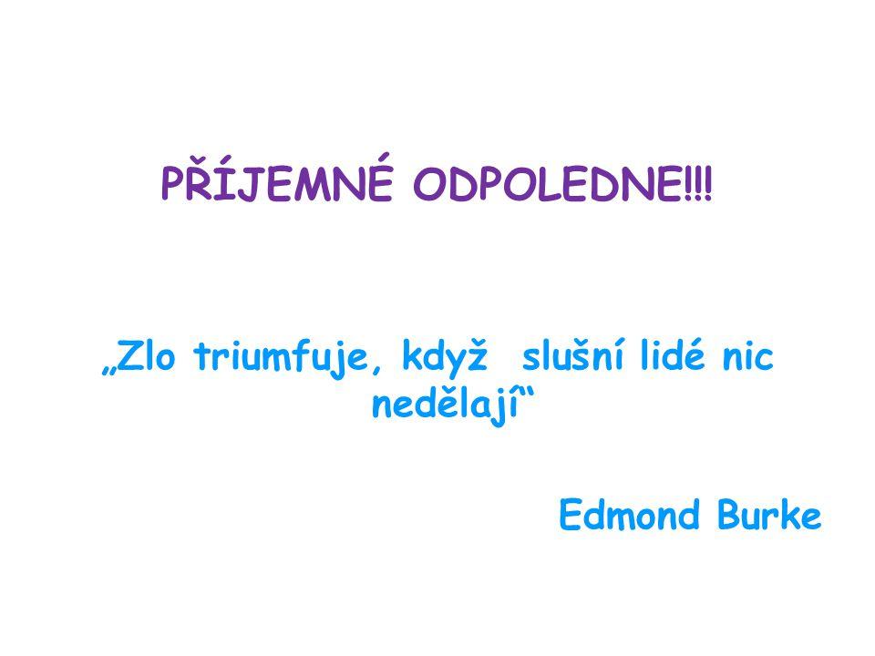 """PŘÍJEMNÉ ODPOLEDNE!!! """"Zlo triumfuje, když slušní lidé nic nedělají"""" Edmond Burke"""